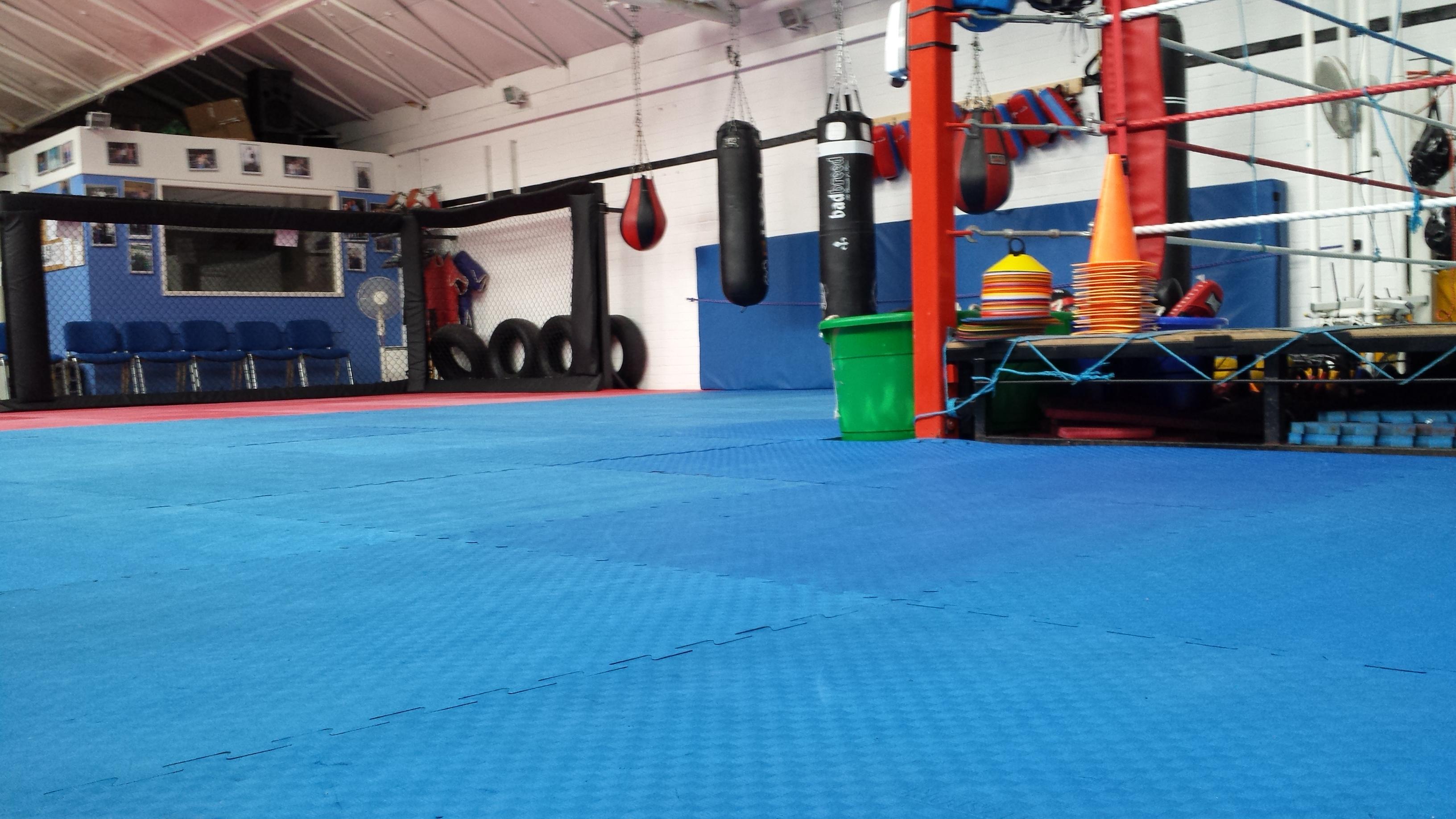 Martial Arts Cl Es